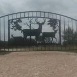 gate ranch 22